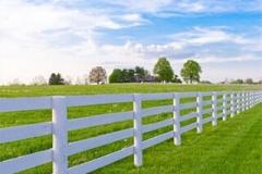 Charlottesville-fence